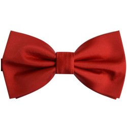 Roses Red bow tie, uni, butterfly