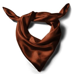 Silk scarf, brown